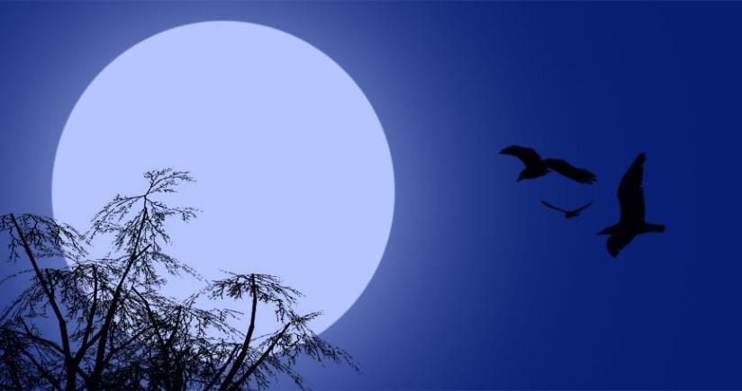 Blue Moon WishingSpell