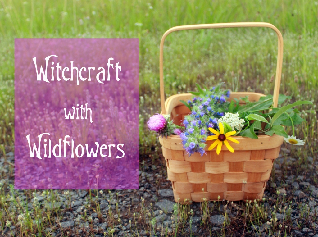 Witchcraft with Wildflowers