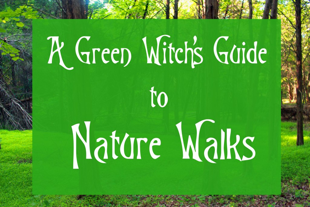 A Green Witch Guide to Nature Walks