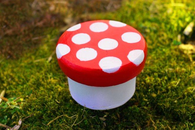 mushroom box