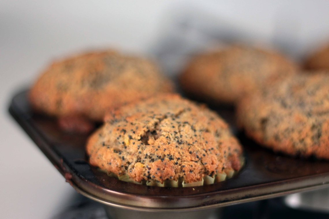 cooked-poppy-seed-cupcakes-wenb